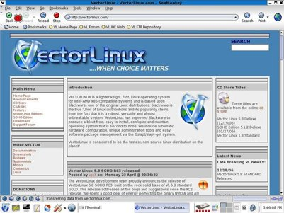 View of Firefox web browser on a Linux distribution.