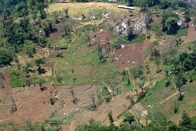 Destruction of the Mau Forest. Picture source: (see below)