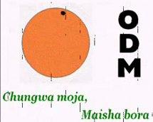 odm_logo
